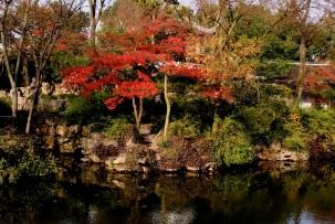 Chinese Garden Show 1 - 085